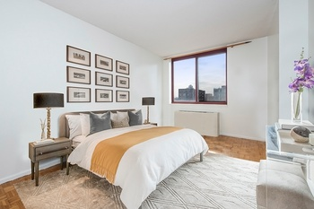 BRIGHT & SPACIOUS ONE BEDROOM ON LONG ISLAND CITY WATERFRONT